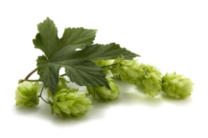 Hops2